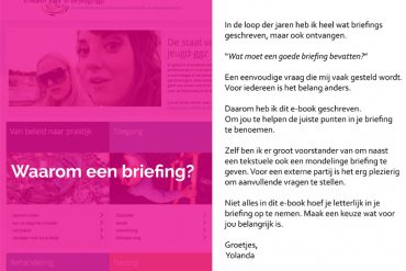e-book briefing opstellen website