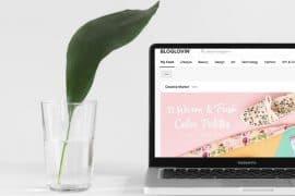 passie voor blogs