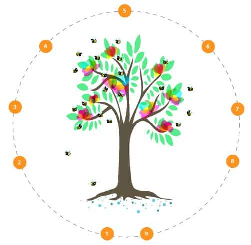 In 9 stappen een succesvolle blog | Succesvol-Bloggen.nl |