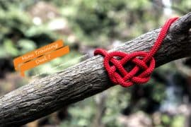 Hoe leg je verbinding tussen blogartikelen?