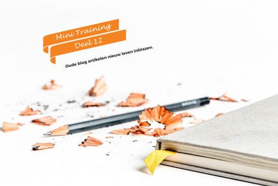 checklist-update-oude-artikelen | succesvol-bloggen.nl | blog | checklist | blogcoach