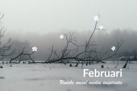 Unieke social media inspiratie: Februari 2019 | Succesvol-Bloggen.nl | socialmedia | onlinecommunicatie