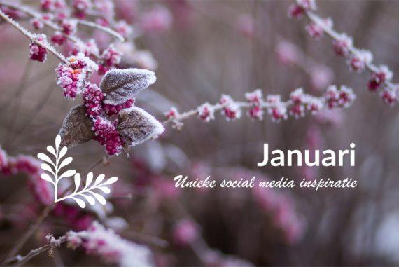 Unieke social media inspiratie: Januari 2019 | Succesvol-Bloggen.nl | socialmedia | onlinecommunicatie
