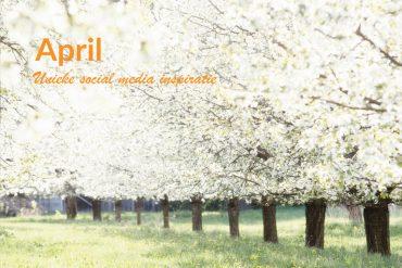Unieke social media inspiratie: April 2019 | Succesvol-Bloggen.nl | socialmedia | onlinecommunicatie