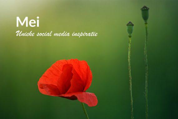 Unieke social media inspiratie: Mei 2019 | Succesvol-Bloggen.nl | socialmedia | onlinecommunicatie